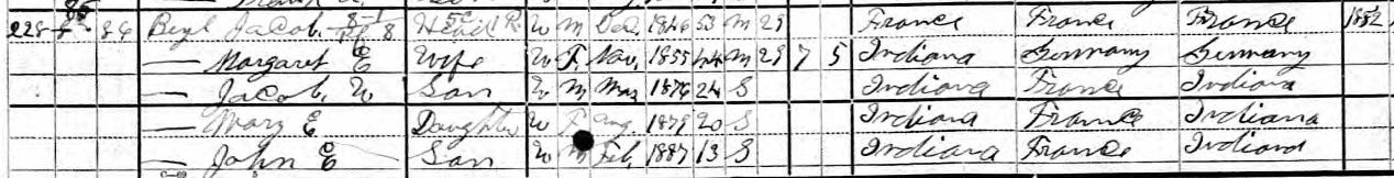 LFB 1900 US Federal Census - 2